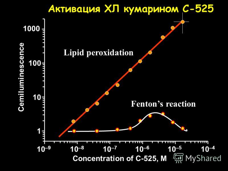 Механизм физической активации ХЛ >C=O* Липидные радикалы = 10 -4 = 0.1 – 1.0 C-525 *
