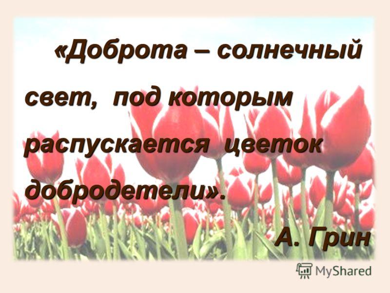 «Доброта – солнечный свет, под которым распускается цветок добродетели». «Доброта – солнечный свет, под которым распускается цветок добродетели». А. Грин