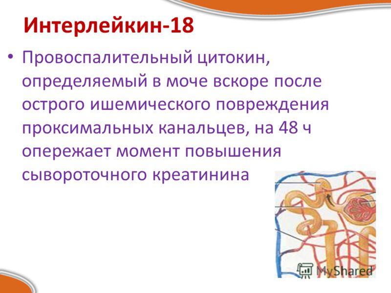 Интерлейкин-18 Провоспалительный цитокин, определяемый в моче вскоре после острого ишемического повреждения проксимальных канальцев, на 48 ч опережает момент повышения сывороточного креатинина