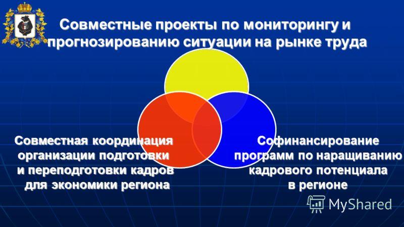 Совместные проекты по мониторингу и прогнозированию ситуации на рынке труда Софинансирование программ по наращиванию кадрового потенциала в регионе Совместная координация организации подготовки и переподготовки кадров для экономики региона для эконом