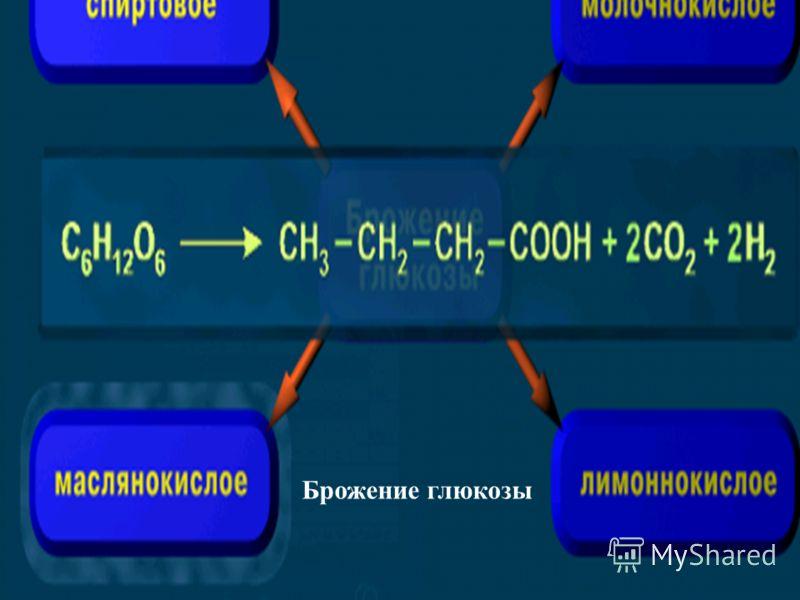 Брожение глюкозы