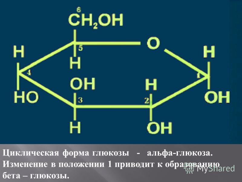 Циклическая форма глюкозы - альфа-глюкоза. Изменение в положении 1 приводит к образованию бета – глюкозы.