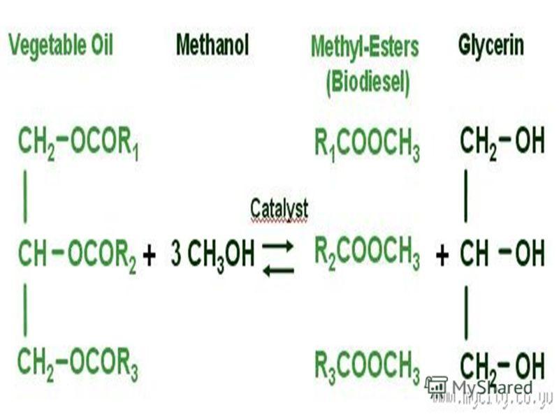 Технолошкиот процес на производство на биодизел врз основа на хемиско- Трансестерификациона реакција на триглицериди со метанол, во присуство на на метали како катализатор, кои што се резултат на метил естри и глицерин. Технолошкиот процес на произво