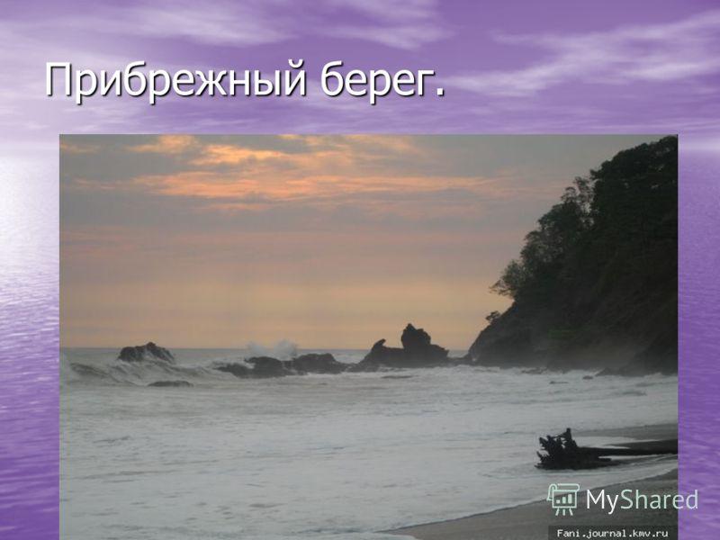 Прибрежный берег.