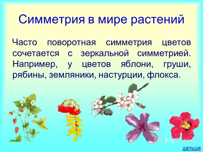Симметрия в мире растений Часто поворотная симметрия цветов сочетается с зеркальной симметрией. Например, у цветов яблони, груши, рябины, земляники, настурции, флокса. дальше