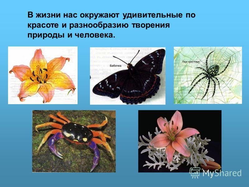 В жизни нас окружают удивительные по красоте и разнообразию творения природы и человека.
