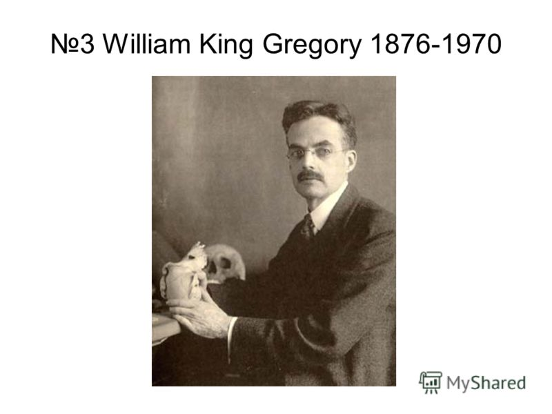 3 William King Gregory 1876-1970