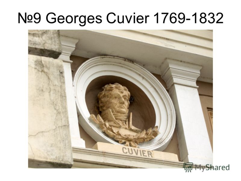 9 Georges Cuvier 1769-1832
