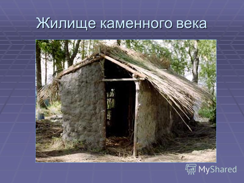 Жилище каменного века