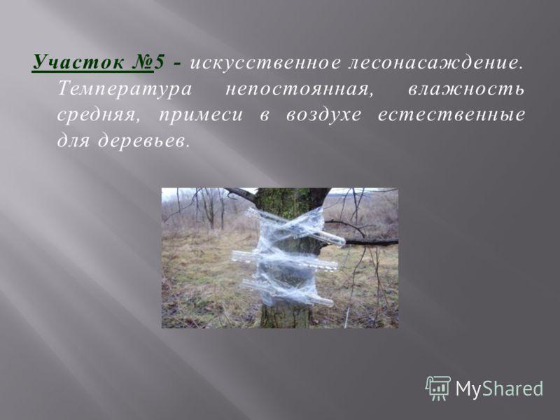 Участок 5 - искусственное лесонасаждение. Температура непостоянная, влажность средняя, примеси в воздухе естественные для деревьев.