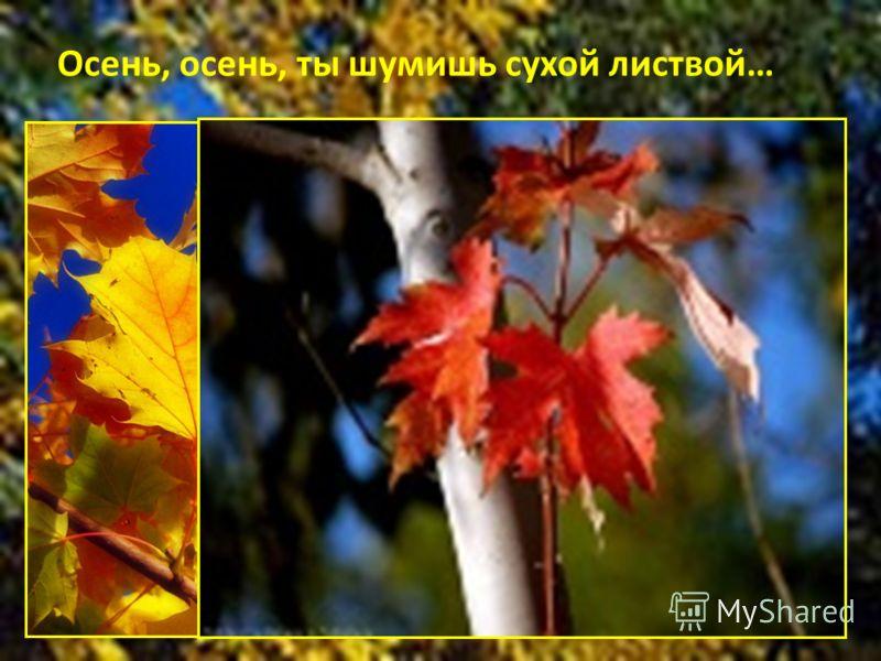Осень, осень, ты шумишь сухой листвой…