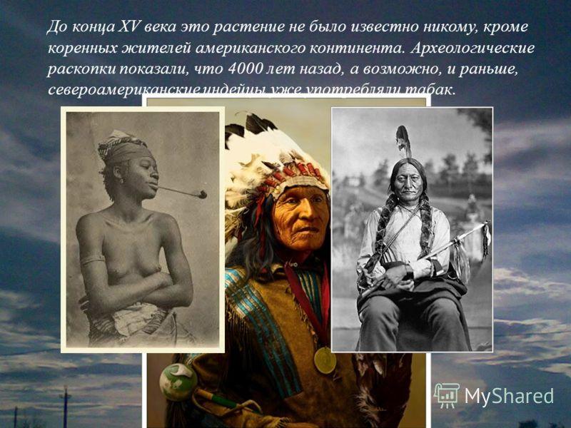 До конца XV века это растение не было известно никому, кроме коренных жителей американского континента. Археологические раскопки показали, что 4000 лет назад, а возможно, и раньше, североамериканские индейцы уже употребляли табак.