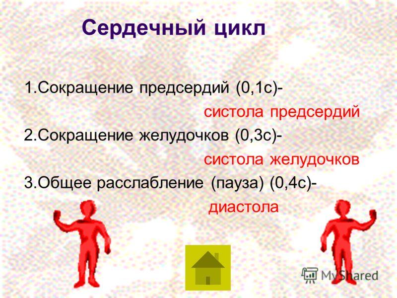 Сердечный цикл 1.Сокращение предсердий (0,1с)- систола предсердий 2.Сокращение желудочков (0,3с)- систола желудочков 3.Общее расслабление (пауза) (0,4с)- диастола