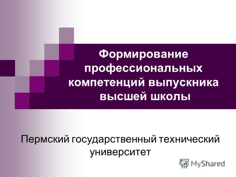 Формирование профессиональных компетенций выпускника высшей школы Пермский государственный технический университет