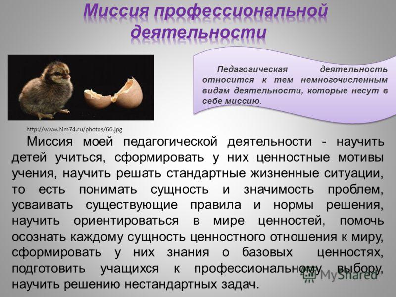 Педагогическая деятельность относится к тем немногочисленным видам деятельности, которые несут в себе миссию.