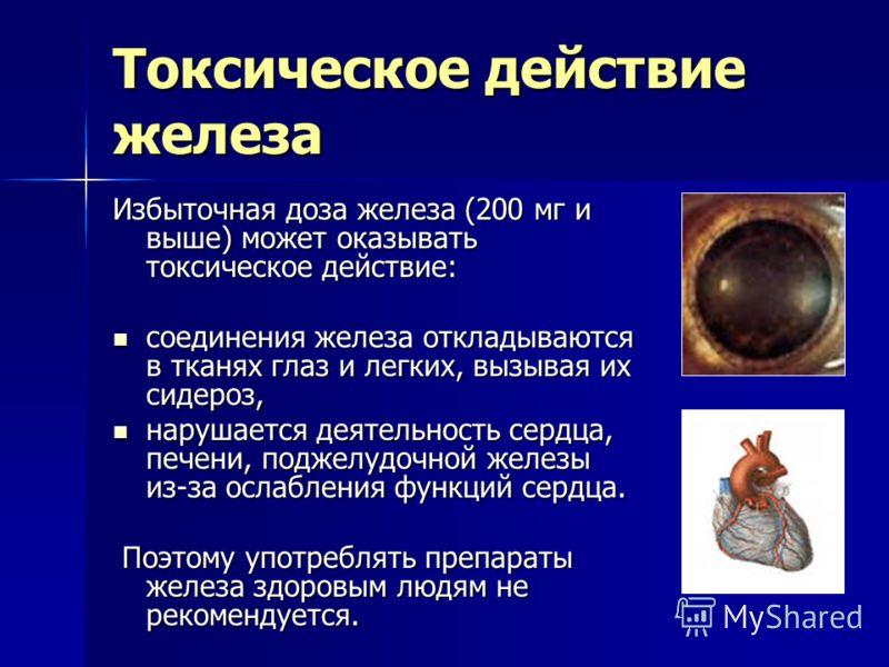 Токсическое действие железа Избыточная доза железа (200 мг и выше) может оказывать токсическое действие: соединения железа откладываются в тканях глаз и легких, вызывая их сидероз, соединения железа откладываются в тканях глаз и легких, вызывая их си