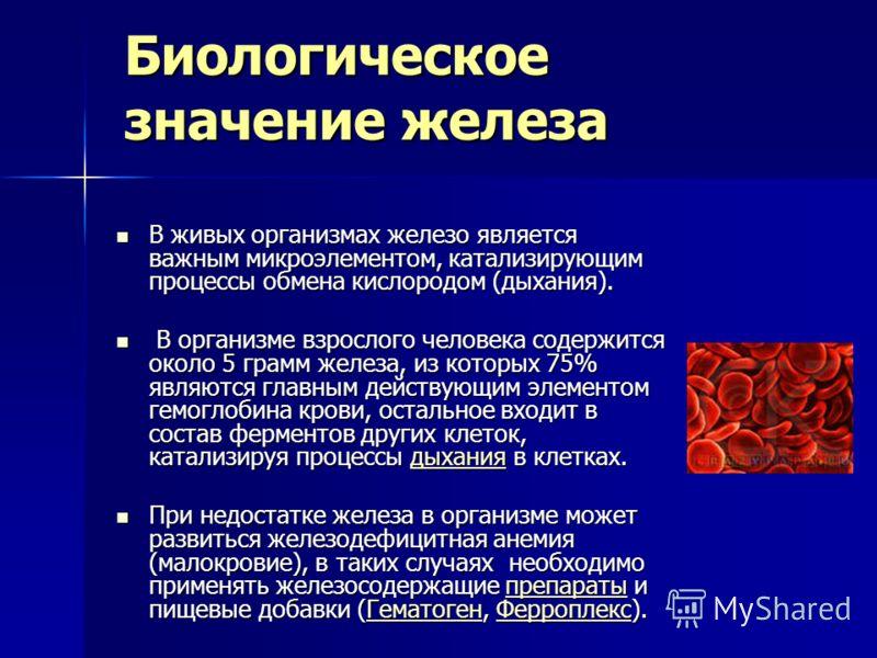 Биологическое значение железа В живых организмах железо является важным микроэлементом, катализирующим процессы обмена кислородом (дыхания). В живых организмах железо является важным микроэлементом, катализирующим процессы обмена кислородом (дыхания)