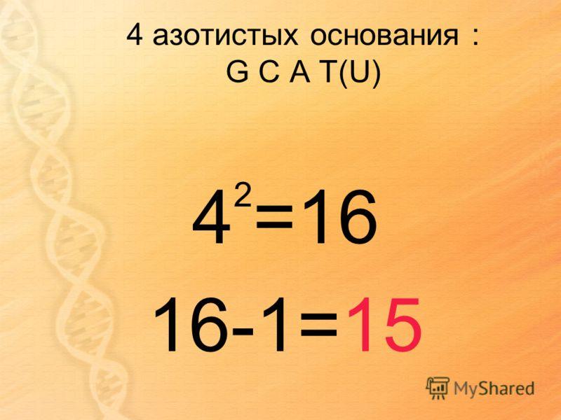 4 азотистых основания : G C A T(U) 4 2 =16 16-1=15