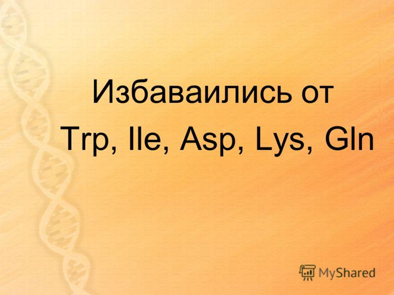 Избаваились от Trp, Ile, Asp, Lys, Gln