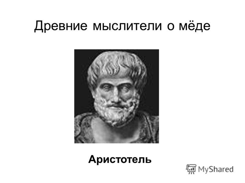 Древние мыслители о мёде Аристотель