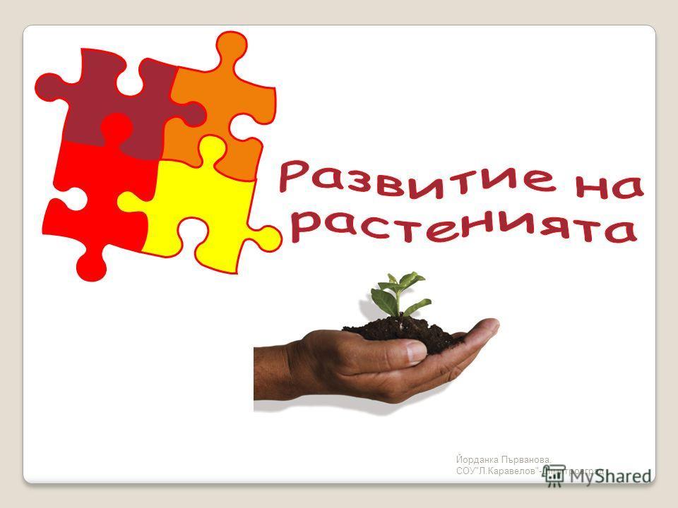 Йорданка Първанова, СОУЛ.Каравелов-Димитровград
