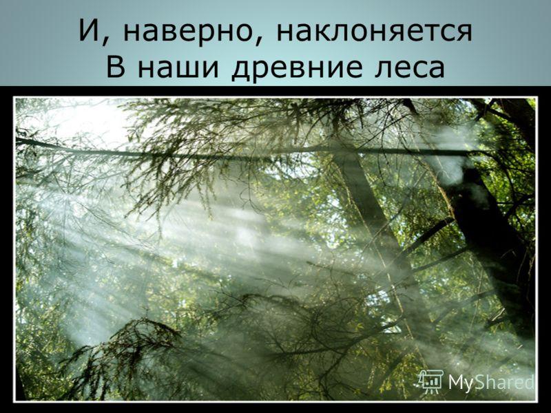 И, наверно, наклоняется В наши древние леса