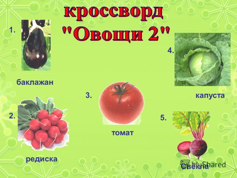 1. баклажан 2. редиска 3. томат 4. капуста 5. Свёкла