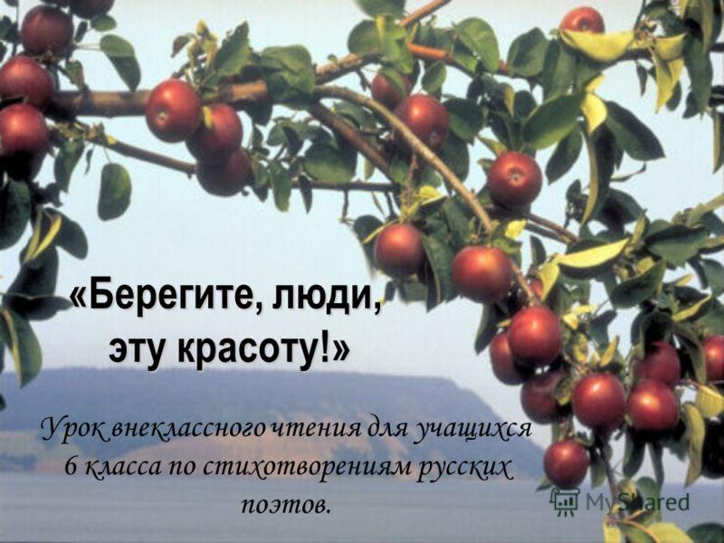 «Берегите, люди, эту красоту!» Урок внеклассного чтения для учащихся 6 класса по стихотворениям русских поэтов.