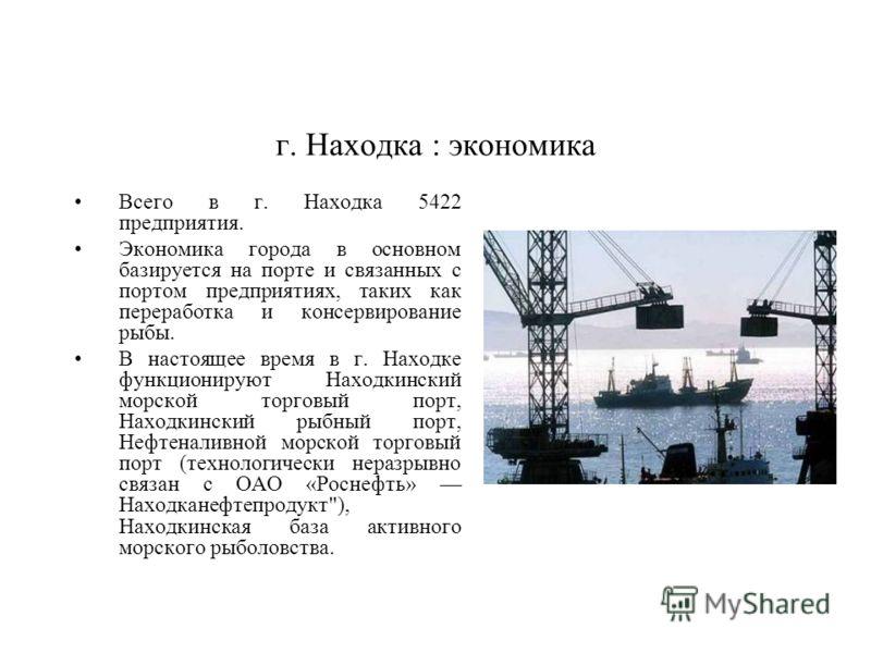 Всего в г. Находка 5422 предприятия. Экономика города в основном базируется на порте и связанных с портом предприятиях, таких как переработка и консервирование рыбы. В настоящее время в г. Находке функционируют Находкинский морской торговый порт, Нах