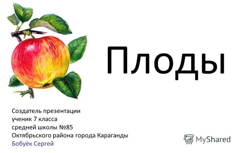 Плоды Создатель презентации ученик 7 класса средней школы 85 Октябрьского района города Караганды Бобуёк Сергей