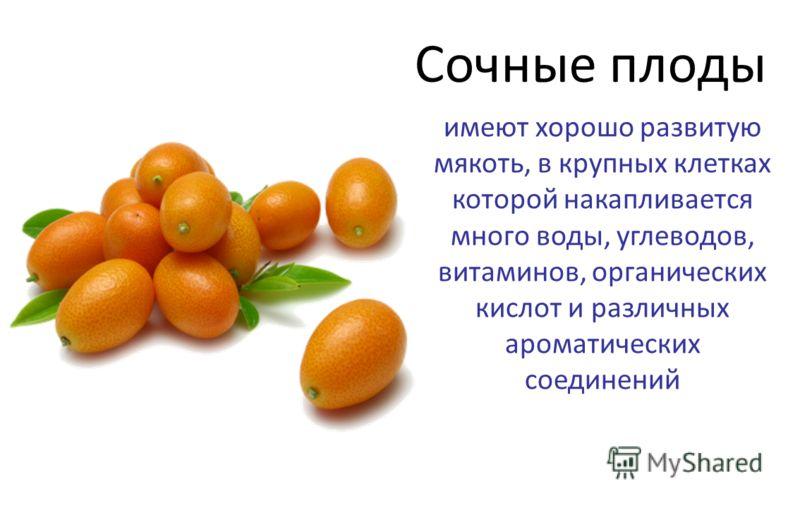 Сочные плоды имеют хорошо развитую мякоть, в крупных клетках которой накапливается много воды, углеводов, витаминов, органических кислот и различных ароматических соединений