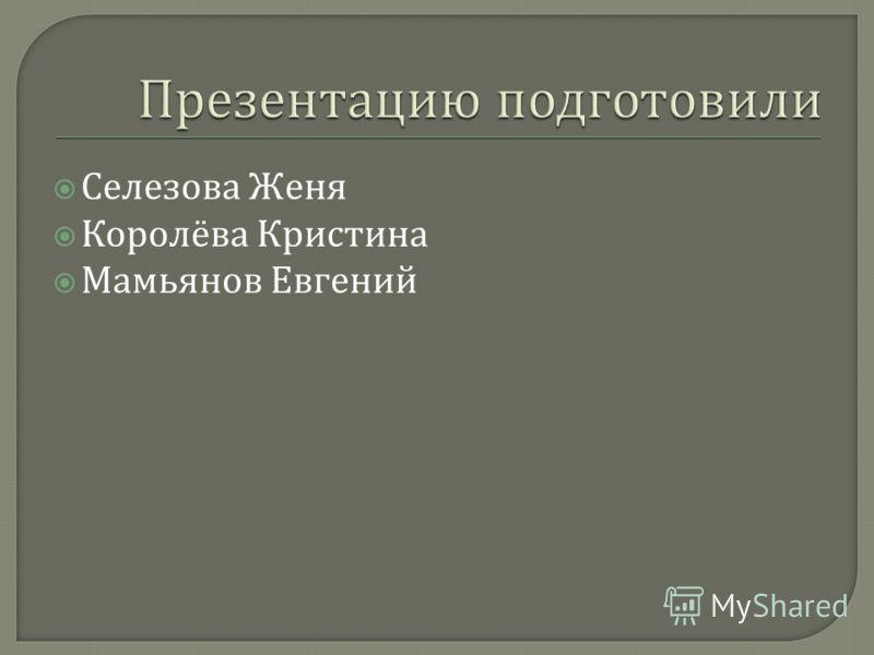 Селезова Женя Королёва Кристина Мамьянов Евгений