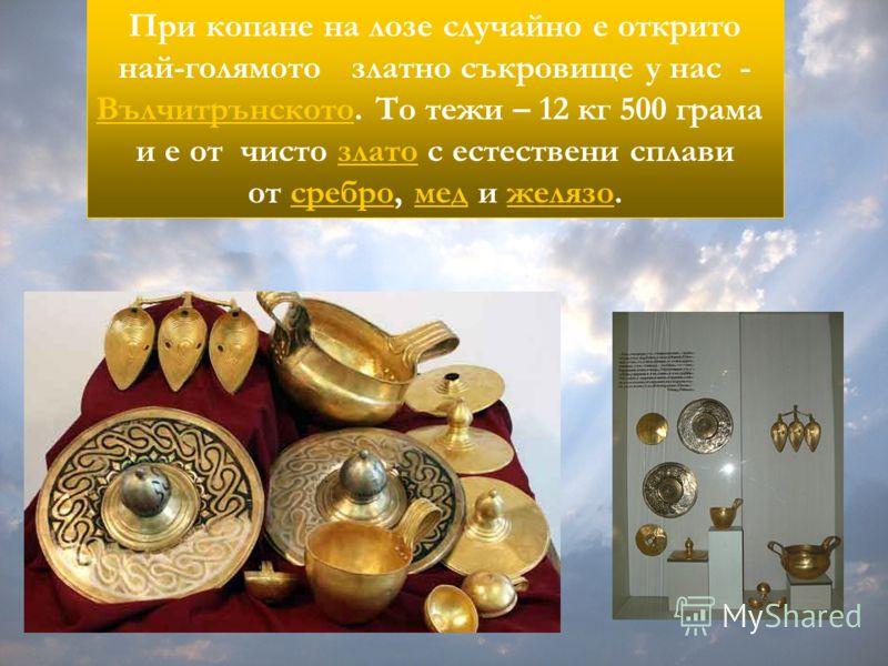 При копане на лозе случайно е открито най-голямото златно съкровище у нас - Вълчитрънското. То тежи – 12 кг 500 грама и е от чисто злато с естествени сплавизлато от сребро, мед и желязо.сребромеджелязо