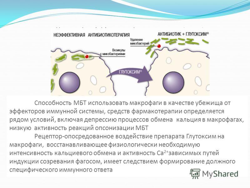 Способность МБТ использовать макрофаги в качестве убежища от эффекторов иммунной системы, средств фармакотерапии определяется рядом условий, включая депрессию процессов обмена кальция в макрофагах, низкую активность реакций опсонизации МБТ Рецептор-о