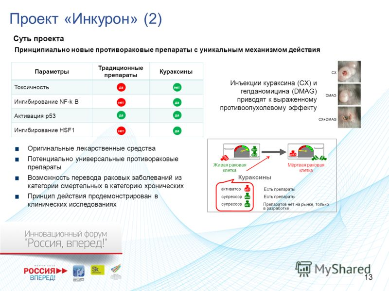 Проект «Инкурон» (2) Суть проекта Параметры Традиционные препараты Кураксины Токсичность Ингибирование NF-k B Активация p53 Ингибирование HSF1 да нет да нет Принципиально новые противораковые препараты с уникальным механизмом действия Оригинальные ле