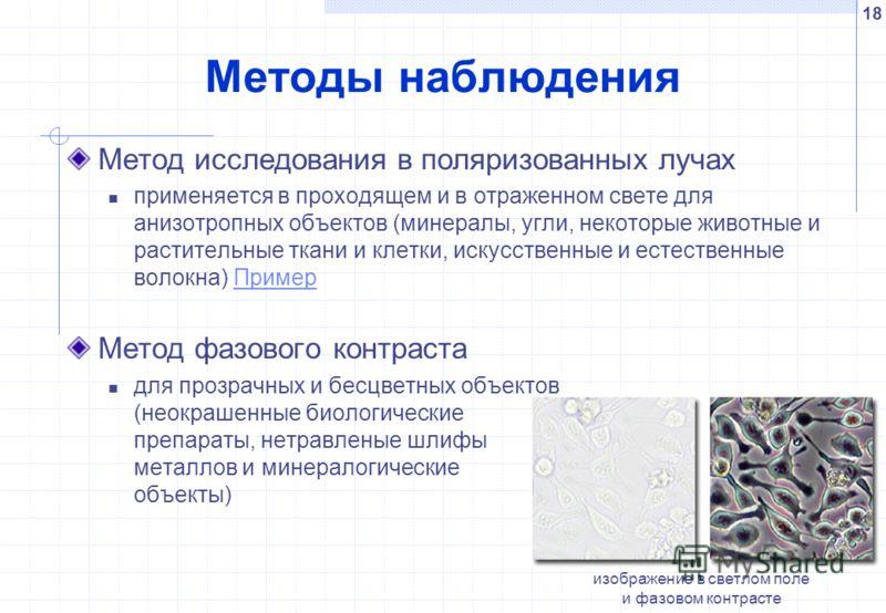 18 Методы наблюдения изображение в светлом поле и фазовом контрасте Метод исследования в поляризованных лучах применяется в проходящем и в отраженном свете для анизотропных объектов (минералы, угли, некоторые животные и растительные ткани и клетки, и