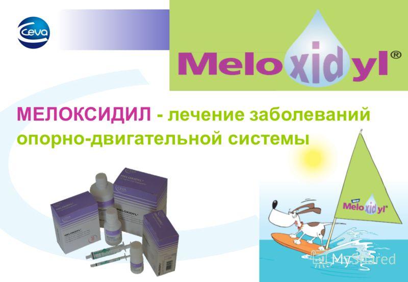 Lavrikova Nastya Marketing manager: pet Moscow Jan-2011 МЕЛОКСИДИЛ - лечение заболеваний опорно-двигательной системы