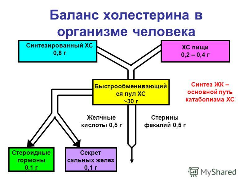 Баланс холестерина в организме человека Синтезированный ХС 0,8 г ХС пищи 0,2 – 0,4 г Синтез ЖК – основной путь катаболизма ХС Быстрообменивающий ся пул ХС ~30 г Стероидные гормоны 0,1 г Секрет сальных желез 0,1 г Желчные кислоты 0,5 г Стерины фекалий