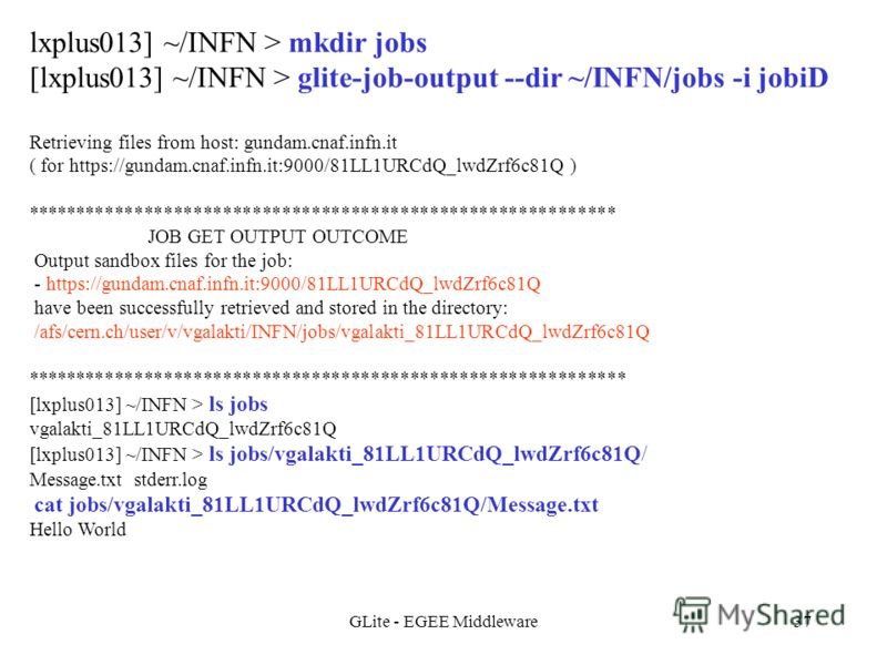 GLite - EGEE Middleware37 lxplus013] ~/INFN > mkdir jobs [lxplus013] ~/INFN > glite-job-output --dir ~/INFN/jobs -i jobiD Retrieving files from host: gundam.cnaf.infn.it ( for https://gundam.cnaf.infn.it:9000/81LL1URCdQ_lwdZrf6c81Q ) ****************