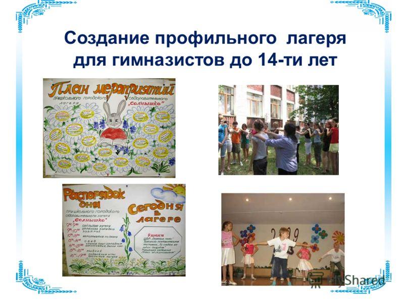 Создание профильного лагеря для гимназистов до 14-ти лет