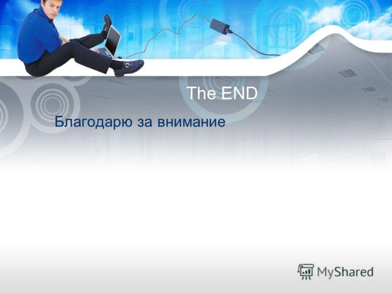 The END Благодарю за внимание