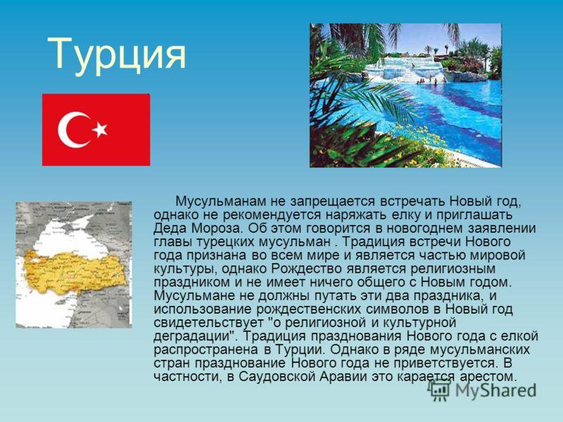 Турция Мусульманам не запрещается встречать Новый год, однако не рекомендуется наряжать елку и приглашать Деда Мороза. Об этом говорится в новогоднем заявлении главы турецких мусульман. Традиция встречи Нового года признана во всем мире и является ча