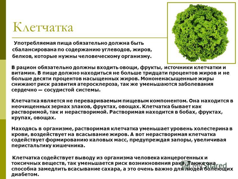 Клетчатка Употребляемая пища обязательно должна быть сбалансирована по содержанию углеводов, жиров, белков, которые нужны человеческому организму. В рацион обязательно должны входить овощи, фрукты, источники клетчатки и витамин. В пище должно находит