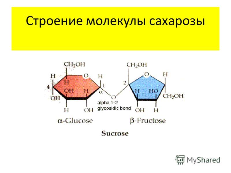 Гдз по Дидактические Материалы по Математике 5 Класс Чесноков Нешков 2013
