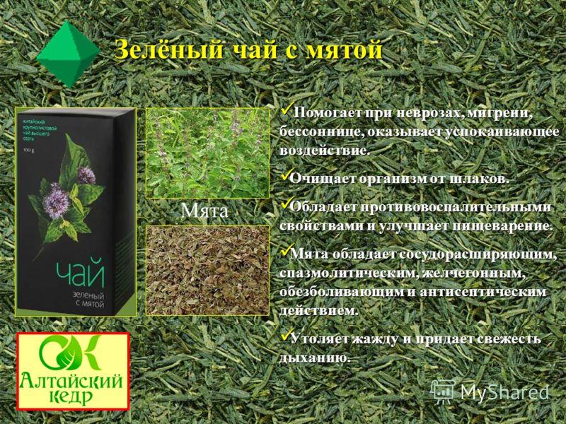 Мята Зелёный чай с мятой Помогает при неврозах, мигрени, бессоннице, оказывает успокаивающее воздействие. Помогает при неврозах, мигрени, бессоннице, оказывает успокаивающее воздействие. Очищает организм от шлаков. Очищает организм от шлаков. Обладае