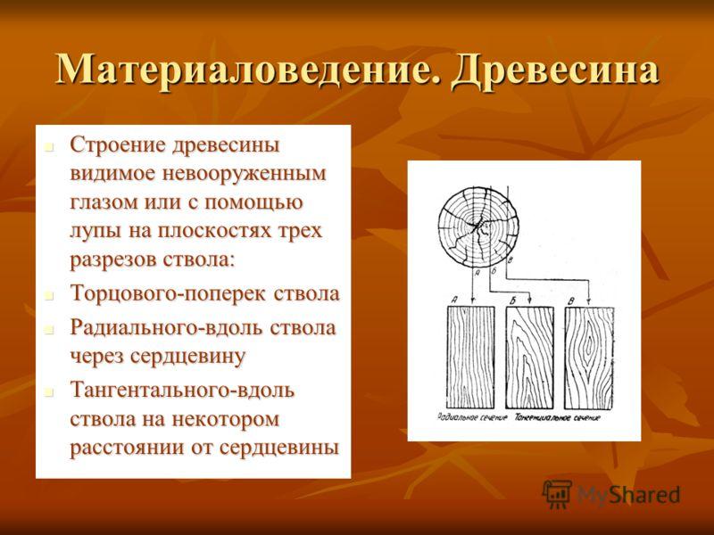 Материаловедение. Древесина Строение древесины видимое невооруженным глазом или с помощью лупы на плоскостях трех разрезов ствола: Строение древесины видимое невооруженным глазом или с помощью лупы на плоскостях трех разрезов ствола: Торцового-попере