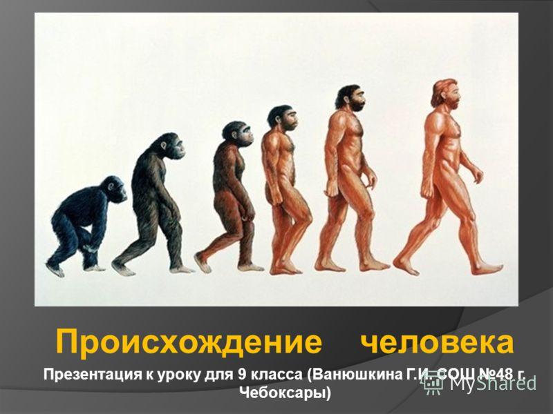Происхождение человека Презентация к уроку для 9 класса (Ванюшкина Г.И. СОШ 48 г. Чебоксары)