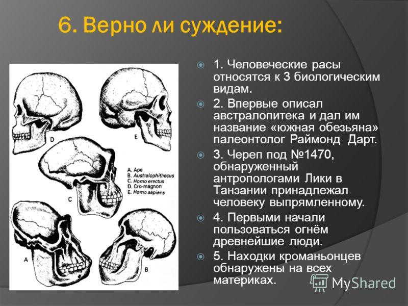 6. Верно ли суждение: 1. Человеческие расы относятся к 3 биологическим видам. 2. Впервые описал австралопитека и дал им название «южная обезьяна» палеонтолог Раймонд Дарт. 3. Череп под 1470, обнаруженный антропологами Лики в Танзании принадлежал чело