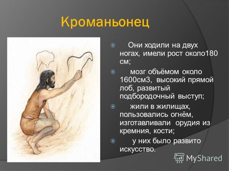 Кроманьонец Они ходили на двух ногах, имели рост около180 см; мозг объёмом около 1600см3, высокий прямой лоб, развитый подбородочный выступ; жили в жилищах, пользовались огнём, изготавливали орудия из кремния, кости; у них было развито искусство.