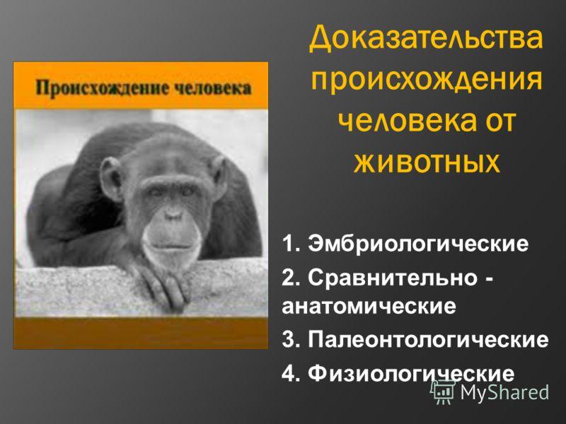 Доказательства происхождения человека от животных 1. Эмбриологические 2. Сравнительно - анатомические 3. Палеонтологические 4. Физиологические